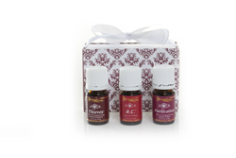 Winter's Purity Essential Oil Mini Collection