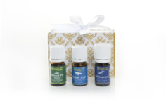 Soothing Solace Essential Oil Mini Collection