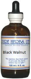 Black Walnut - Antibiotic, antiseptic