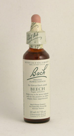 Beech Bach Flower Remedy