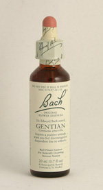 Gentian Bach Flower Remedy