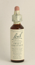 Sweet Chestnut Bach Flower Remedy
