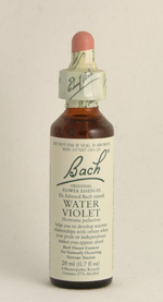 Water Violet Bach Flower Remedy