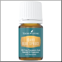 Idaho Blue Spruce Essential Oil