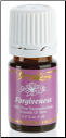 Forgiveness™ Essential Oil Blend