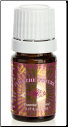 Into the Future™ Essential Oil Blend