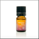 Helichrysum Essential Oil (5 ml)
