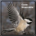 ONAC of Cante Wowicakhe adoptions