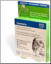 Insomnia Combination Homeopathic Remedy - Blister Pack